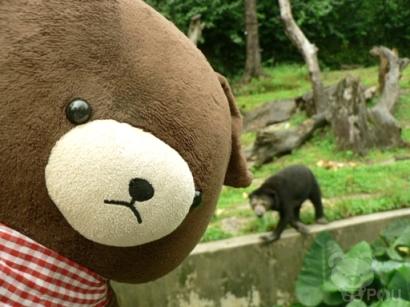 漫游雨城动物园记