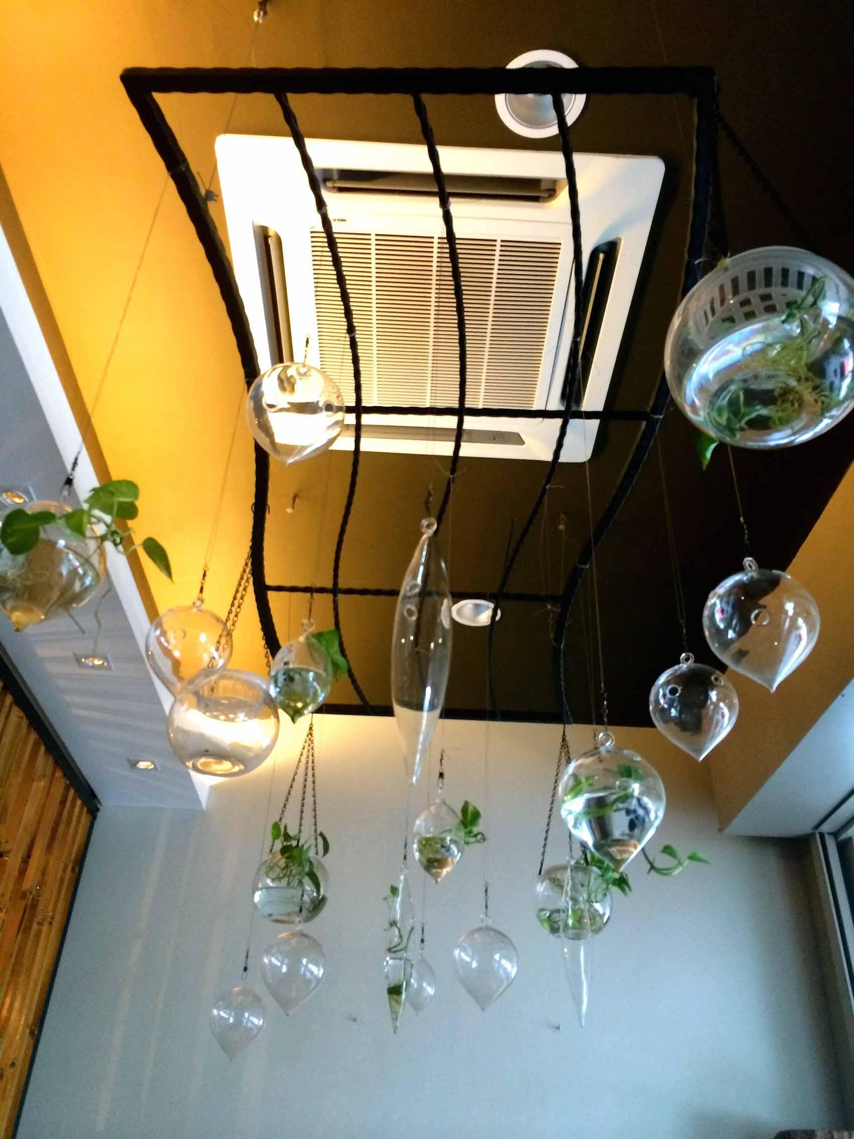 Journey2Life 旅人蔬食。人文空间: 小植物