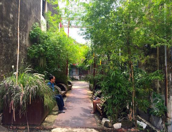 绿色生活美学: 打石街诗情画意的小花园
