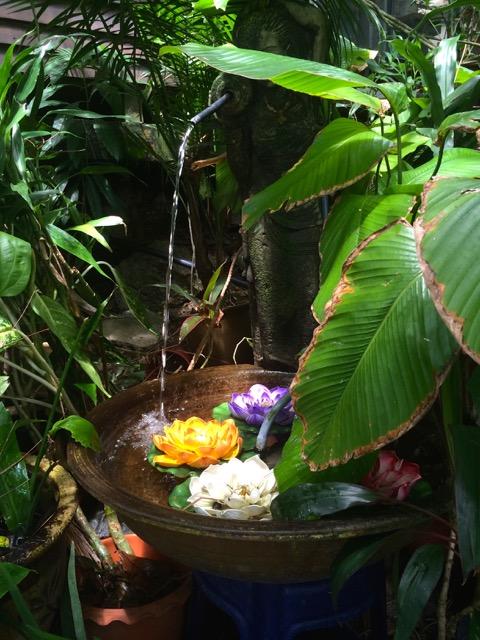 槟城Tropica Spice Garden (热带香料花园): 疗愈森林