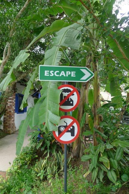 Penang Escape Theme Park: 成长是美丽的疼痛