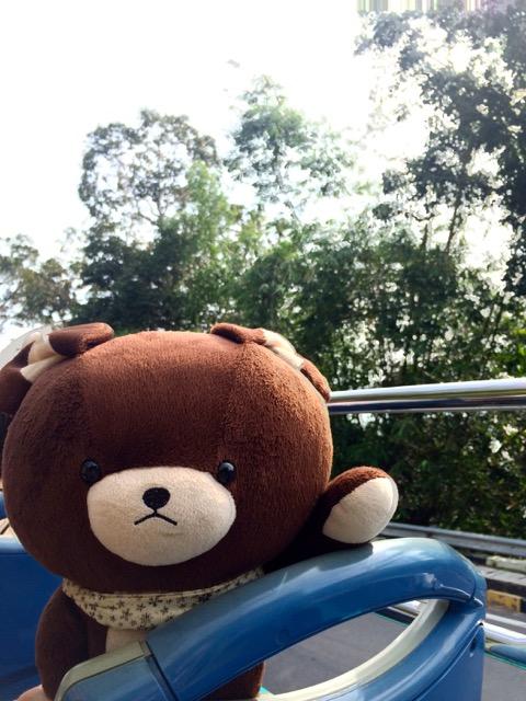 槟城双层观光巴士(PENANG HOP-ON HOP-OFF): 最美的风景在路上
