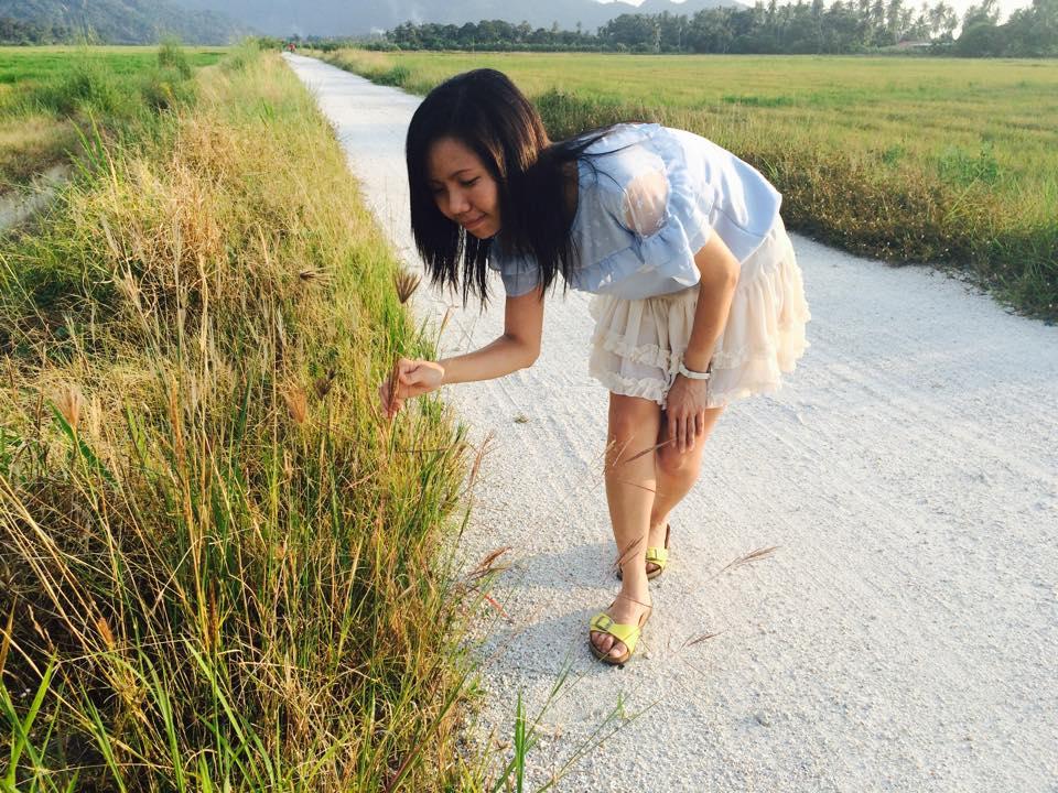 Balik Pulau BookLodge B&B 書屋: 田園風光小日子